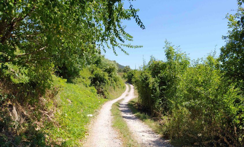 camins rurals Ripollès